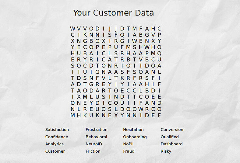 neuro-id-puzzle-customer-data-blog